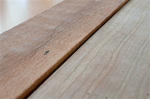 Dich vụ xử lý bề mặt trên chất liệu gỗ